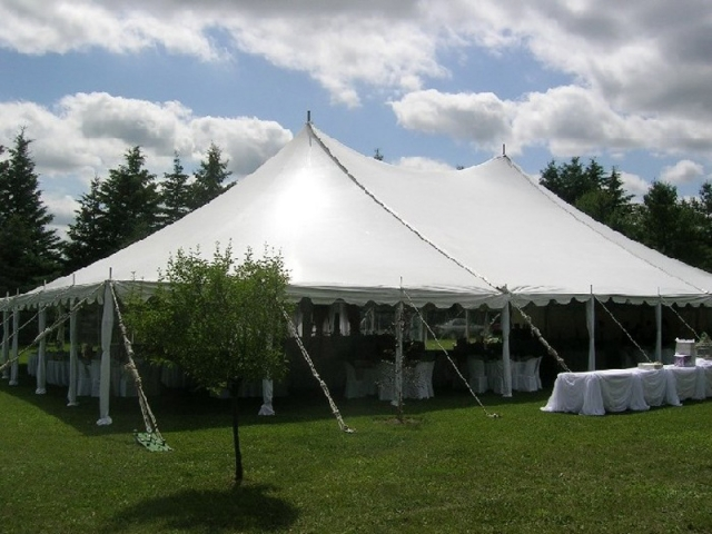 Peg & Pole Tent at Affordable Price
